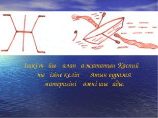 Ішкі тұйық алапқа жататын Каспий теңізіне келіп құятын еуразия материгінің өз