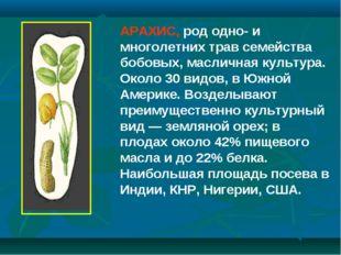 АРАХИС, род одно- и многолетних трав семейства бобовых, масличная культура. О