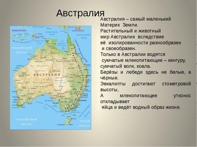 Австралия – самый маленький Материк Земли. Растительный и животный мир Австра...