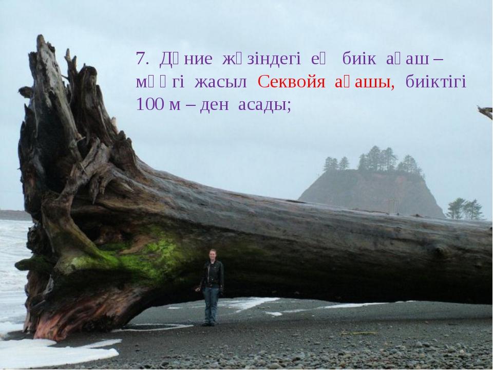 7. Дүние жүзіндегі ең биік ағаш – мәңгі жасыл Секвойя ағашы, биіктігі 100 м –...