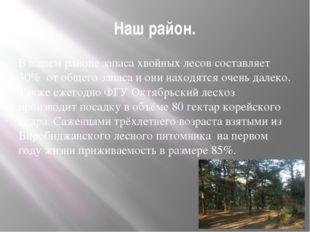 Наш район. В нашем районе запаса хвойных лесов составляет 30% от общего запас