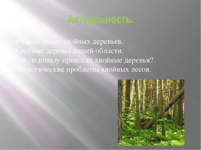 Актуальность. -Разнообразие хвойных деревьев. -Хвойные деревья нашей области....