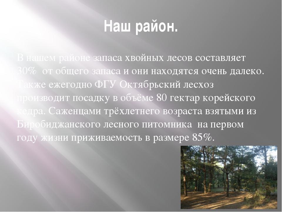 Наш район. В нашем районе запаса хвойных лесов составляет 30% от общего запас...