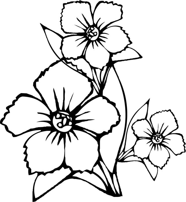 Открытка днем, нарисовать цветок на открытку