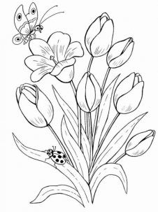 Картинки для раскрашивания цветы распечатать