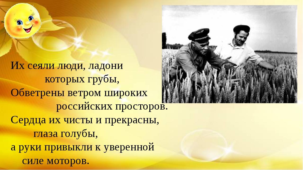 Их сеяли люди, ладони которых грубы, Обветрены ветром широких российских пр...