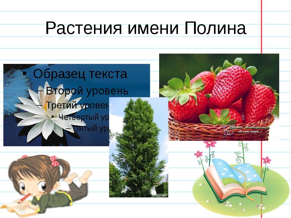 Растения имени Полина