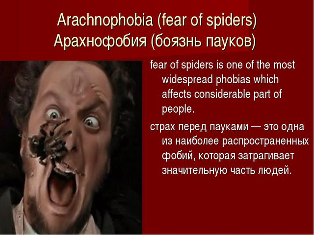 Arachnophobia (fear of spiders) Арахнофобия (боязнь пауков)  fear of spiders...