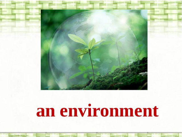 an environment