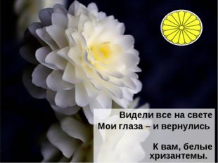 Видели все на свете Мои глаза – и вернулись К вам, белые хризантемы. Иссе Кос