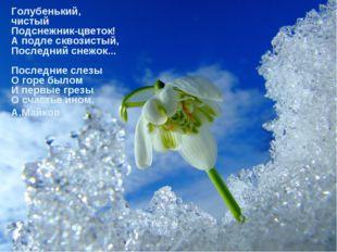 Голубенький, чистый Подснежник-цветок! А подле сквозистый, Последний снежок..