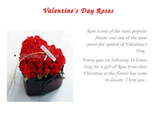 Valentine's Day Roses Rose is one of the most popular flower and one of the m