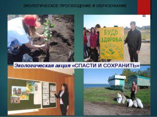 Экологическая акция «СПАСТИ И СОХРАНИТЬ» ЭКОЛОГИЧЕСКОЕ ПРОСВЕЩЕНИЕ И ОБРАЗОВА