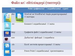 Файл кеңейтілімдері (типтері):   .bmp Paintграфикалық қолданбасының суреті