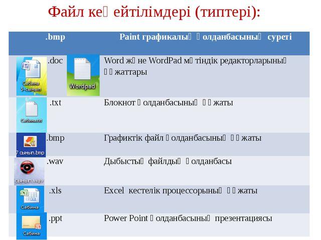 Файл кеңейтілімдері (типтері):   .bmp Paintграфикалық қолданбасының суреті...