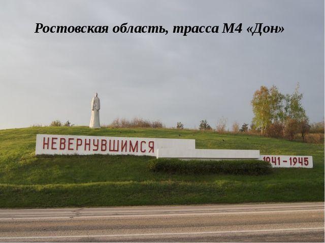 Ростовская область, трасса М4 «Дон»