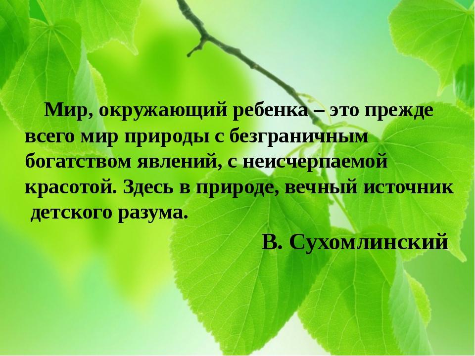 Мир, окружающий ребенка – это прежде всего мир природы с безграничным богатс...