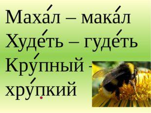 Махал – макал Худеть – гудеть Крупный – хрупкий