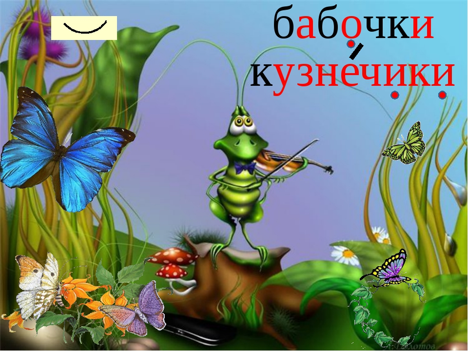 бабочки кузнечики