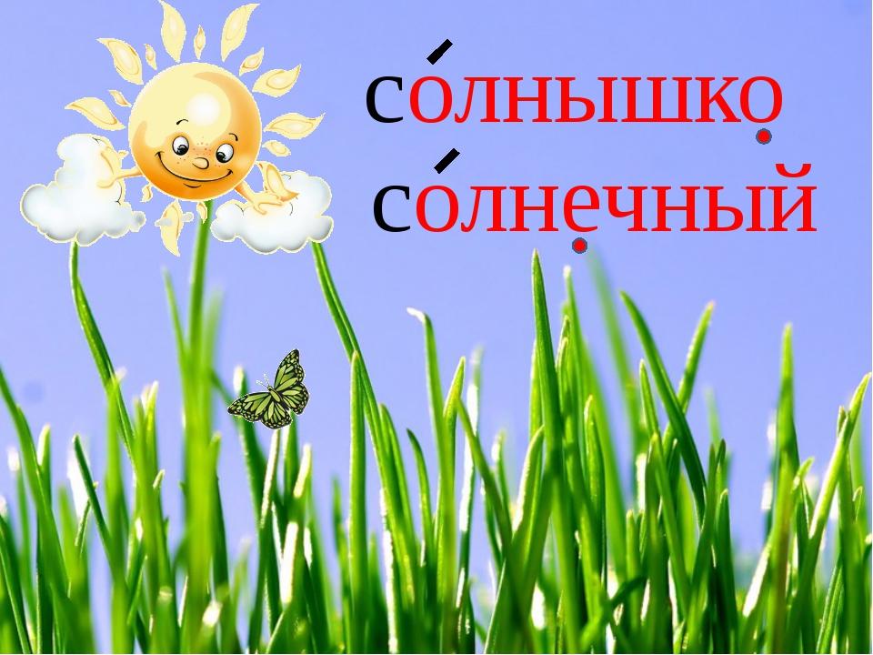 солнышко солнечный