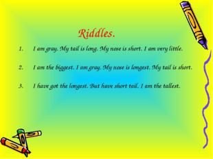 Riddles. I am gray. My tail is long. My nose is short. I am very little. I am