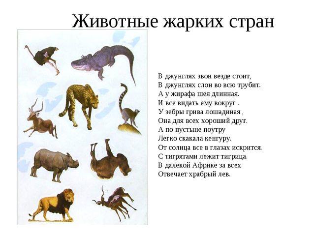 Животные жарких стран В джунглях звон везде стоит, В джунглях слон во всю тру...