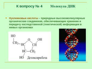 К вопросу № 4 Молекула ДНК Нуклеиновые кислоты – природные высокомолекулярные