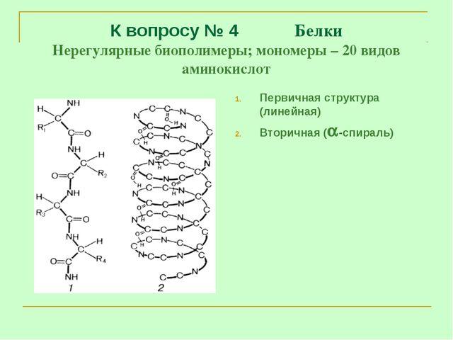 К вопросу № 4 Белки Нерегулярные биополимеры; мономеры – 20 видов аминокислот...