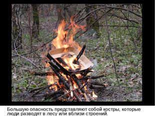 Большую опасность представляют собой костры, которые люди разводят в лесу ил