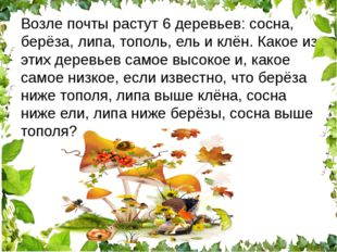 Возле почты растут 6 деревьев: сосна, берёза, липа, тополь, ель и клён. Какое