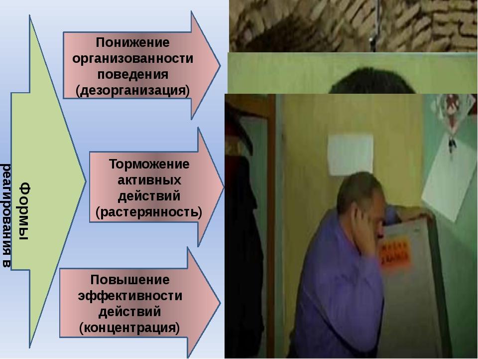 Понижение организованности поведения (дезорганизация) Торможение активных дей...