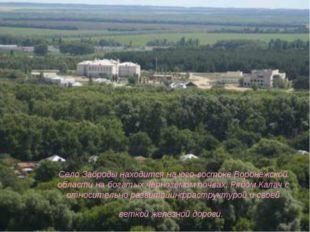 Село Заброды находится на юго-востоке Воронежской области на богатых чернозё