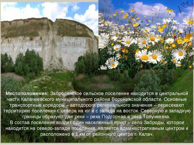 Местоположение: Заброденское сельское поселение находится в центральной части...