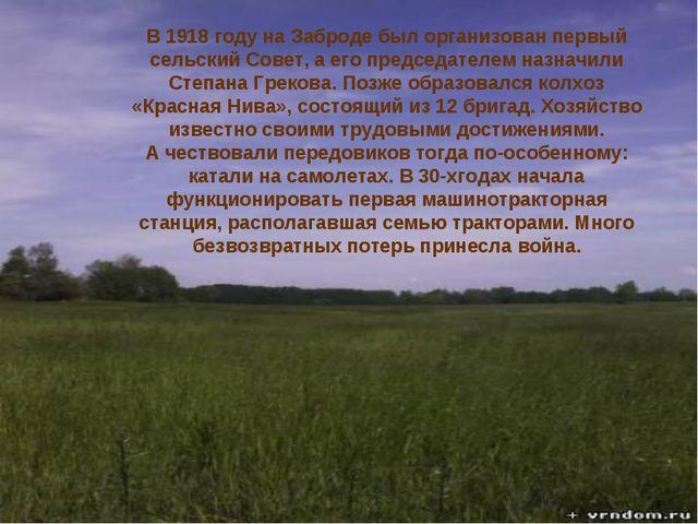 история В1918 году наЗаброде был организован первый сельский Совет, аего...