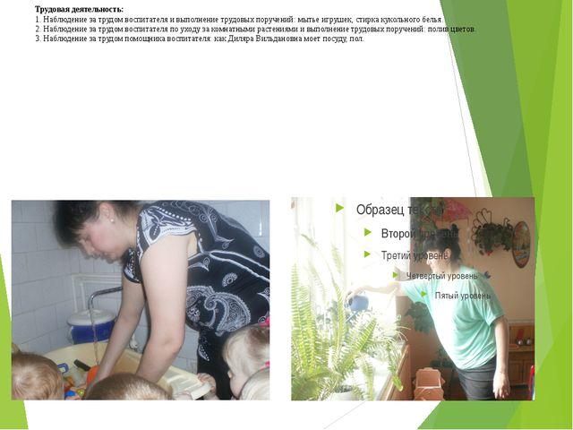 Трудовая деятельность: 1. Наблюдение за трудом воспитателя и выполнение трудо...