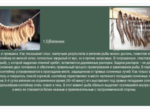 1.5)Вяление: Вяление рыбы – процесс не менее трудоемкий и ответственный, чем