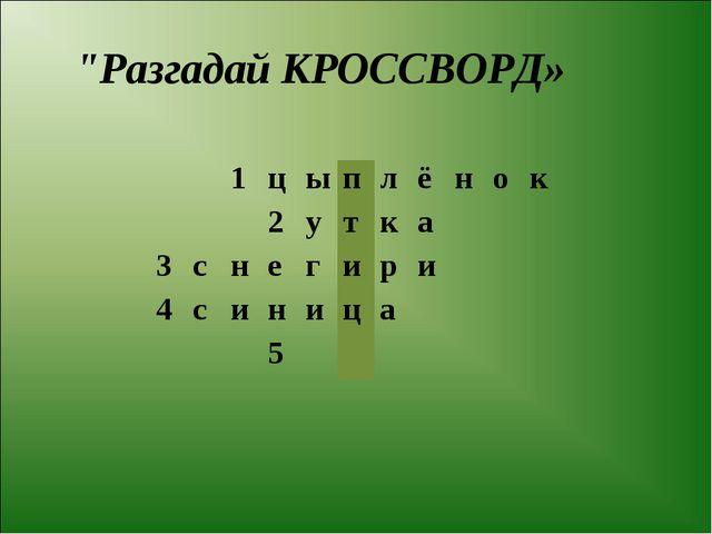 """Разгадай КРОССВОРД» 1цыплёнок 2утка 3снегири 4..."