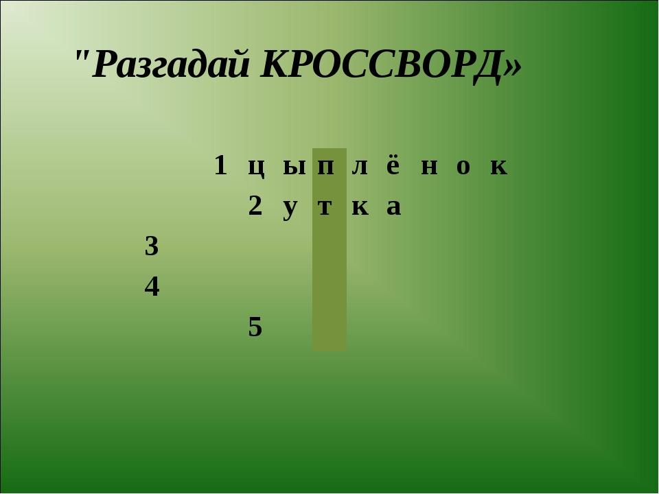 """Разгадай КРОССВОРД» 1цыплёнок 2утка 3 4..."