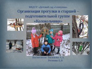 МБДОУ «Детский сад «Аленушка» Организация прогулки в старшей – подготовитель