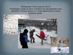 Наблюдение «Чьи следы на снегу?» Рассмотреть следы на снегу, подумать чьи они