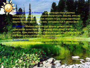 Сабақтың мақсаты: а) білімділік -оқушылардың ойшыл ақынның өлеңдерін, шығарма