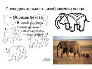 Последовательность изображения слона Обрати внимание на