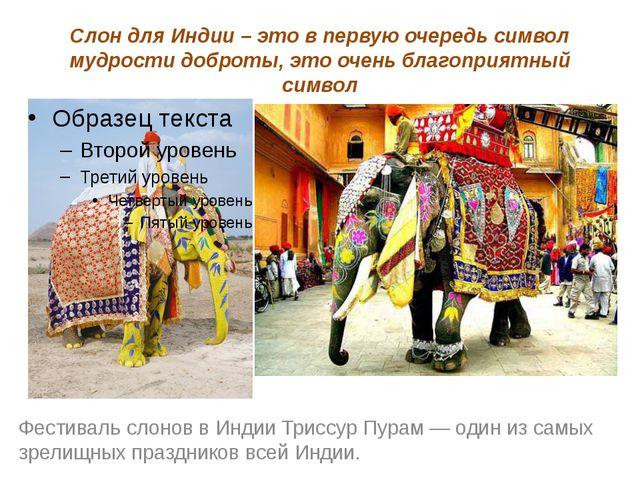 Слон для Индии – это в первую очередь символ мудрости доброты, это очень благ...
