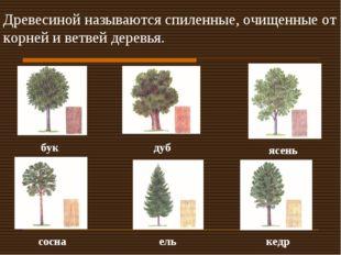 Древесиной называются спиленные, очищенные от корней и ветвей деревья. бук ду
