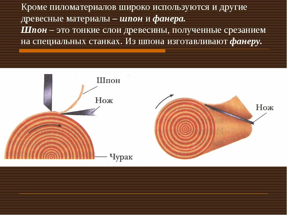 Кроме пиломатериалов широко используются и другие древесные материалы – шпон...