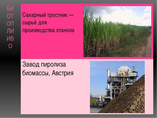 БИОТОПЛИИВО Сахарный тростник— сырьё для производства этанола Завод пиролиза...