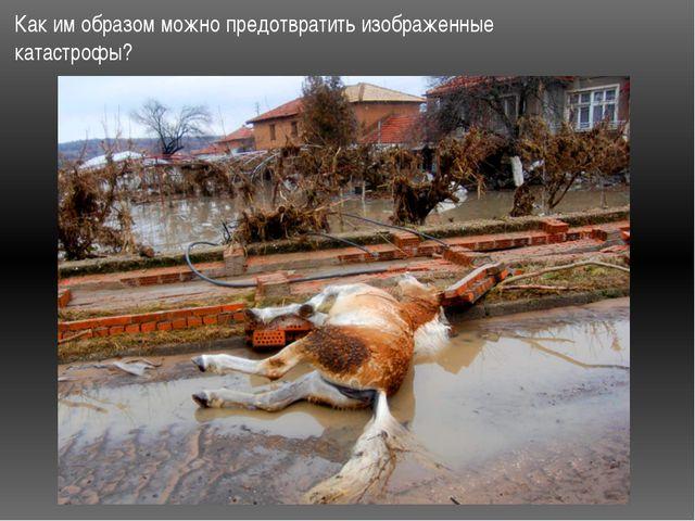 Как им образом можно предотвратить изображенные катастрофы?