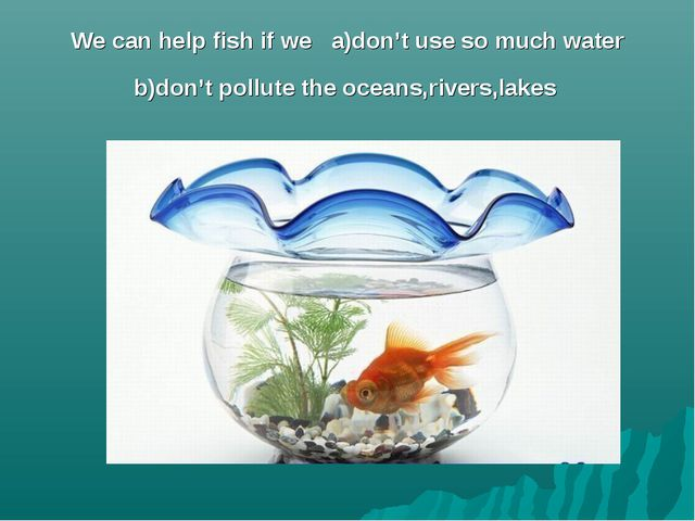 We can help fish if we a)don't use so much water b)don't pollute the oceans,r...