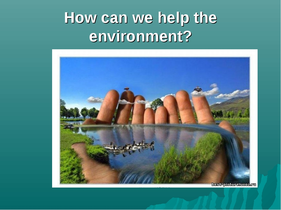 How can we help the environment?