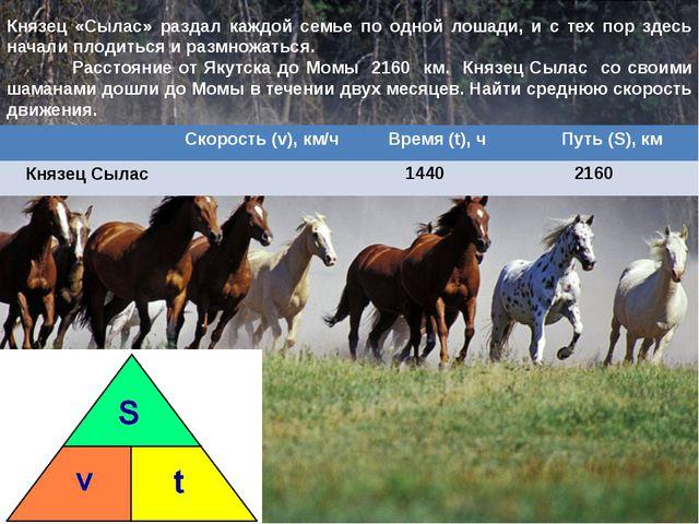 Князец «Сылас» раздал каждой семье по одной лошади, и с тех пор здесь начали...